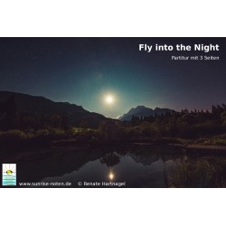 Fly into the Night