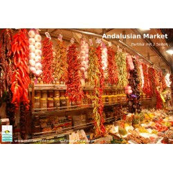 Andalusian Market